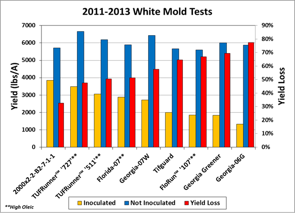 Tests for reaction to white mold in Marianna, Florida during 2011-13.